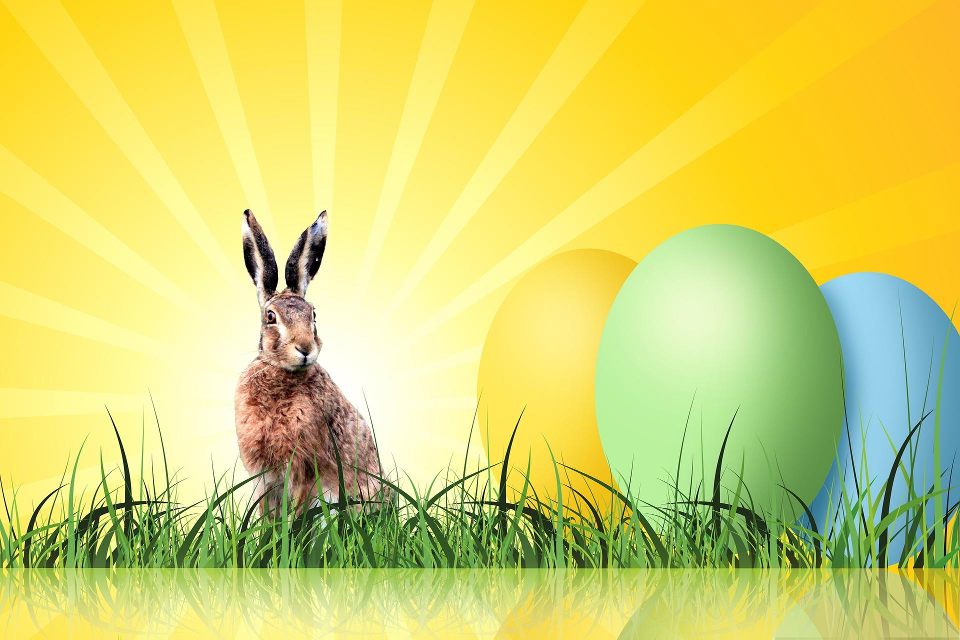 Frohe Ostern! Öffnungszeiten an den Ostertagen