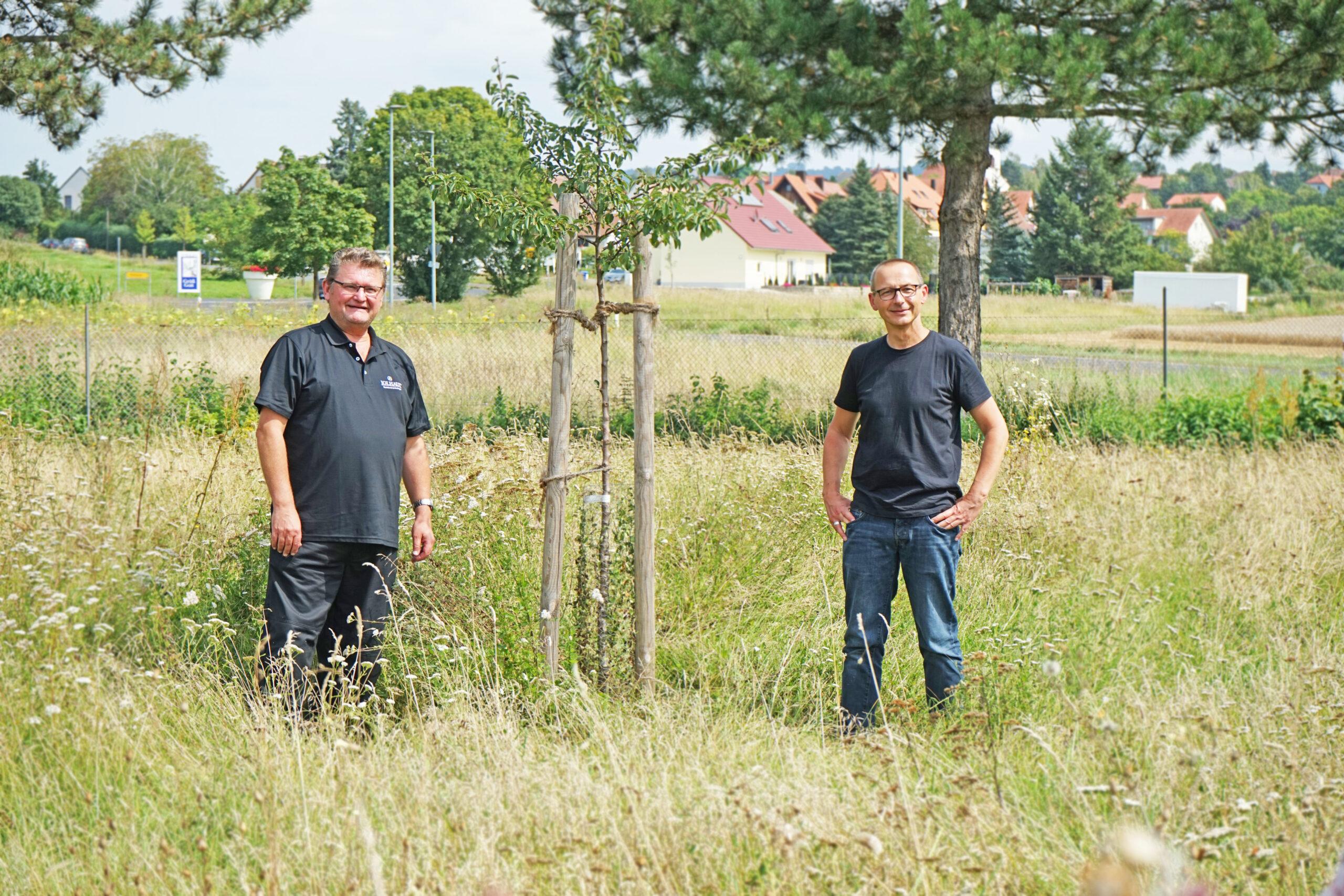 Ökologische Aufwertung unseres Firmengeländes in Kitzingen!